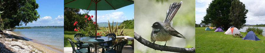 Aroha Island Eco Centre Accommodation and Camping